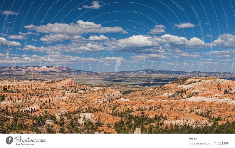 Bryce Canyon National Park Nature Landscape Plant Earth Sand Air Sky Clouds Beautiful weather Tree Desert Bryce Amphitheater Tourist Attraction Stone Relaxation
