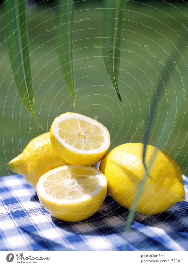 Green Sun Summer Calm Yellow Meadow Food Healthy Fruit Esthetic Serene Organic produce Diet Checkered Vitamin Lemon