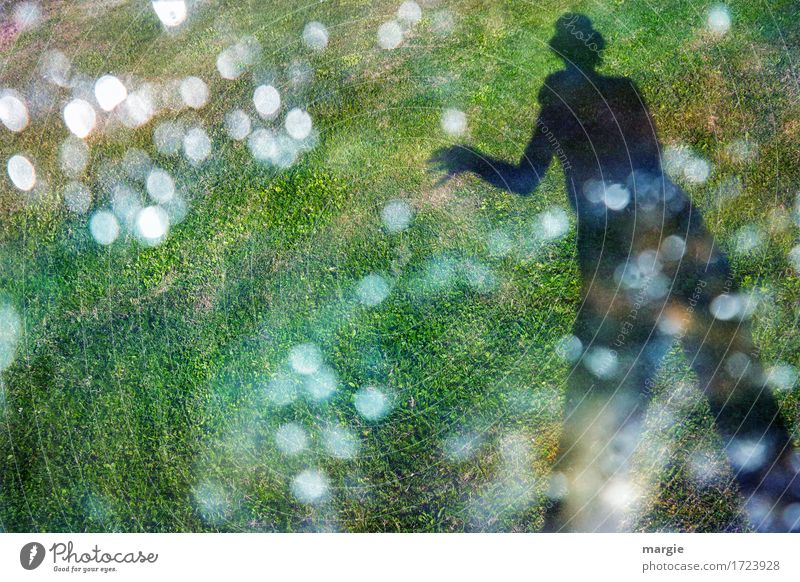 Points - Catcher: The shadow of a person with a top hat on a meadow catching lights with his hands Human being Masculine Feminine Woman Adults Man 1 Sun