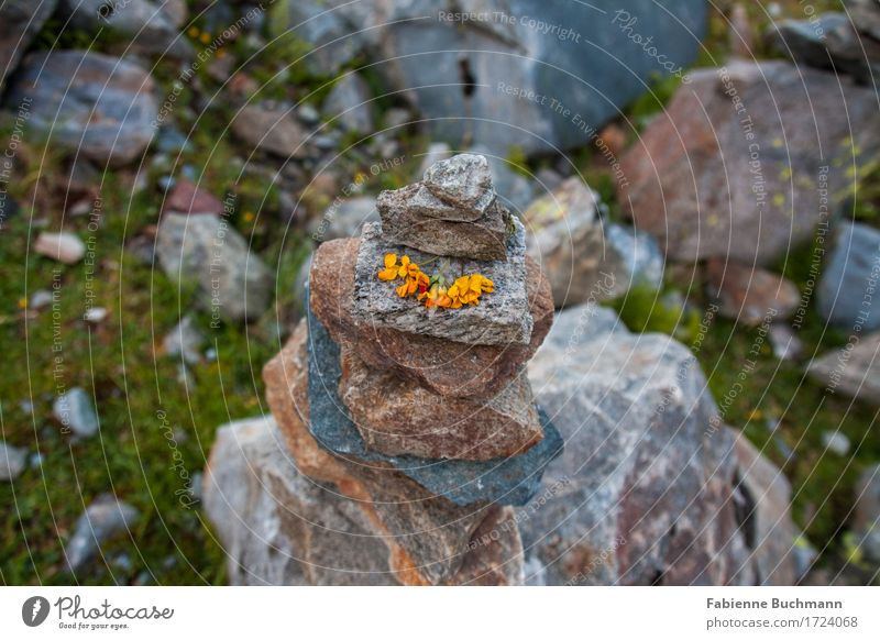 signpost Art Work of art Nature Flower Blossom Rock Alps Stone Brown Yellow Gray Green Road marking Decoration Tower stone tower Colour photo Exterior shot