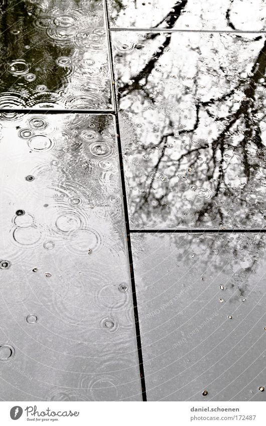Water Black Dark Gray Stone Sadness Rain Drops of water Wet Grief Fluid Mirror image Bad weather