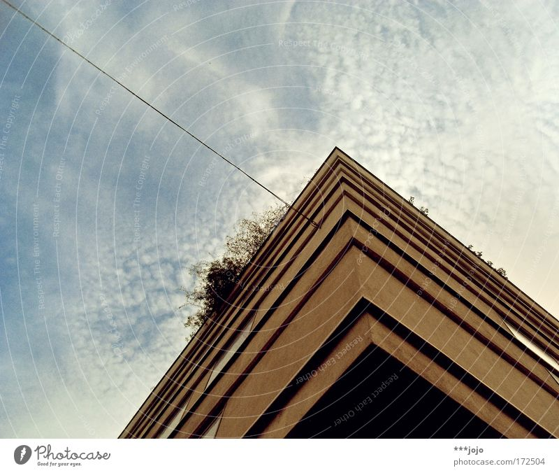 cube on the leash. Colour photo Exterior shot Copy Space left Copy Space top Day Worm's-eye view Style Flat (apartment) House (Residential Structure) Town