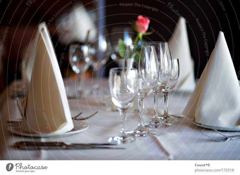 Table set with rose Colour photo Subdued colour Interior shot Close-up Detail Deserted Shadow Dinner Banquet Business lunch Crockery Plate Glass Cutlery