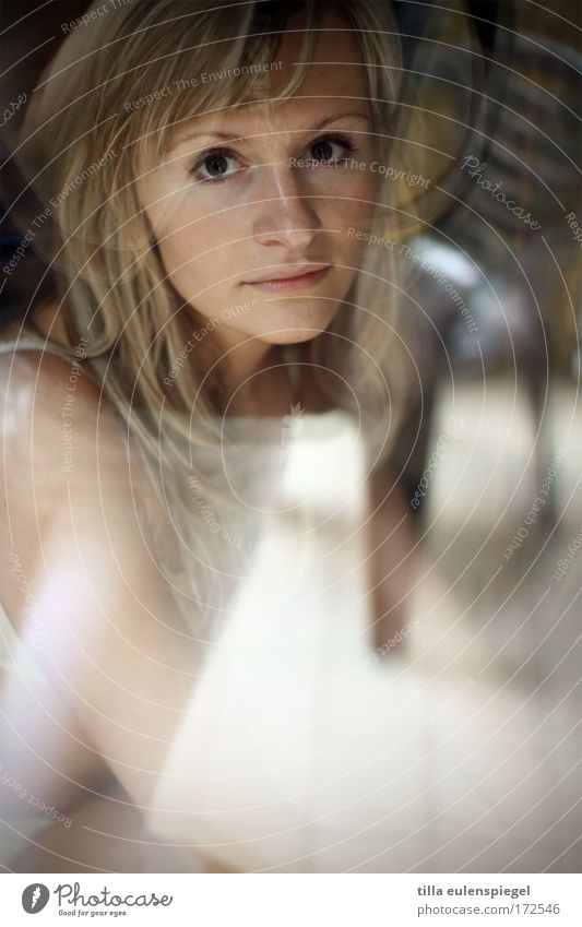 Human being Youth (Young adults) Beautiful Face Calm Loneliness Feminine Window Dream Adults Portrait photograph Observe Window pane Woman Lovesickness
