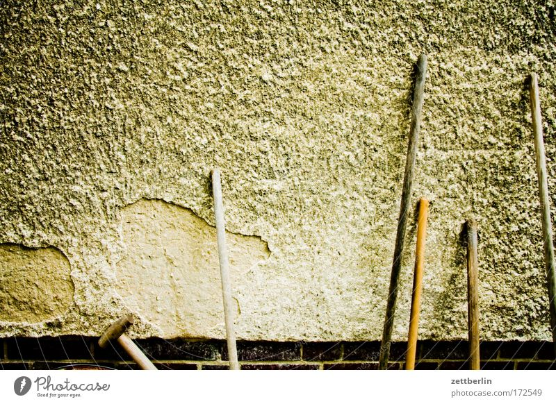 House (Residential Structure) Wall (building) Garden Background picture Arrangement Row Parking Plaster Tenant Gardening Broom Landlord Gardener Copy Space