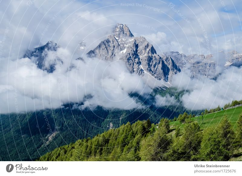 Sesto Dolomites 2 Vacation & Travel Tourism Trip Adventure Summer vacation Mountain Hiking Environment Nature Landscape Plant Air Sky Clouds Beautiful weather