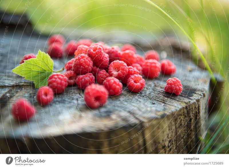 raspberries Nutrition Eating Lunch Buffet Brunch Picnic Organic produce Vegetarian diet Lifestyle Healthy Healthy Eating Plant Idyll Wellness Raspberry Berries