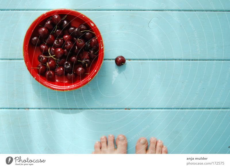 Cherry time Beautiful Summer Feet Fruit Story Time Bowl Cherry Androgynous Fruit basket Baby blue