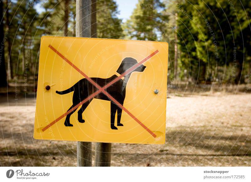 Dogs forbidden Pet Crossed Forest Negative prohibited Restrictive Park Mark Sign allowed Deserted