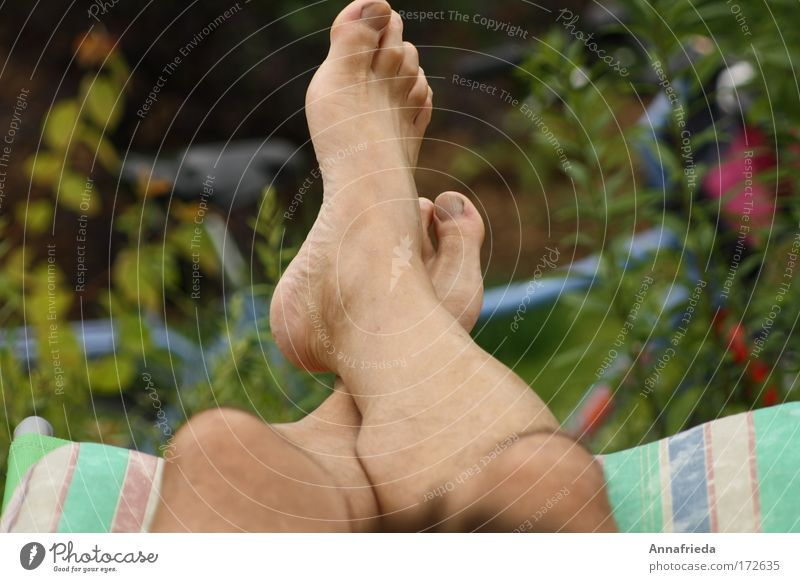 Nature Summer Relaxation Legs Feet Lie Leisure and hobbies Skin Masculine Break Beautiful weather Wheel Barefoot Toes Calf Tip of the toe