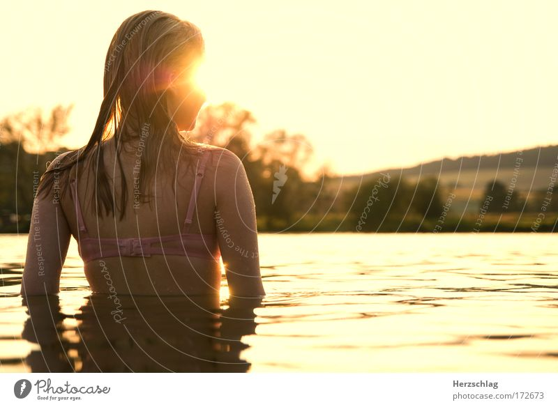 Longing. Colour photo Exterior shot Copy Space right Upper body Rear view Looking away Feminine Head Hair and hairstyles Back Water Swimming & Bathing Touch
