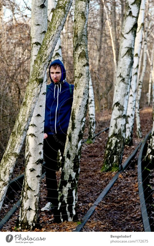 Birch trees Railroad tracks Human being Young man Youth (Young adults) 1 18 - 30 years Adults Nature Earth Autumn Tree Birch wood Forest Jacket