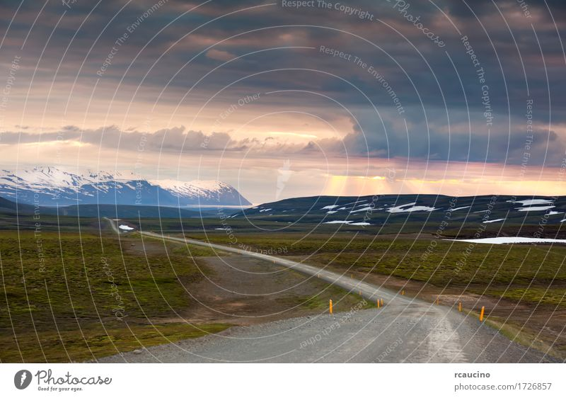 Ondulated and empty road in the sub-artic icelandic landscape Summer Landscape Europe Adventure Iceland