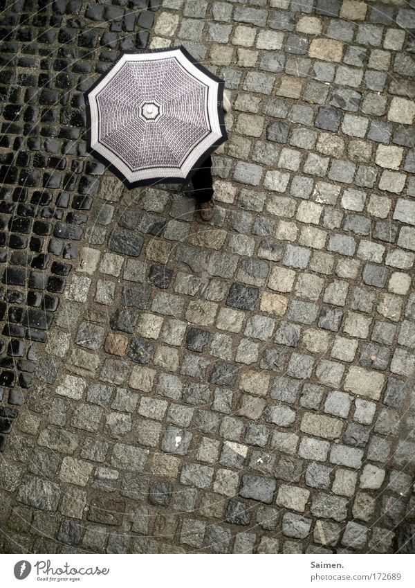 Street Cold Movement Feet Lanes & trails Rain Legs Going Weather Walking Wet To go for a walk Stop Umbrella Umbrellas & Shades Paving stone