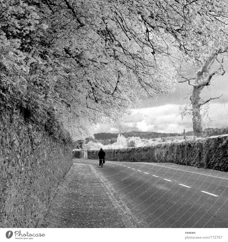 cyclist Black & white photo Exterior shot Day Central perspective Human being 1 Road traffic Cycling Street Lanes & trails Bicycle Driving Traveling