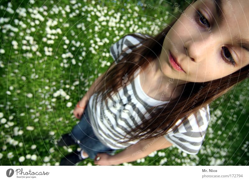 Beautiful Girl Face Head Grass Hair and hairstyles Think Dream Mouth Wait Nose Perspective Cool (slang) T-shirt Posture