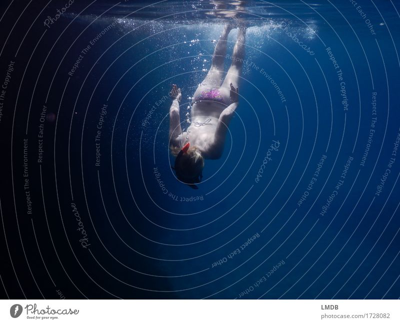 Dive upside down Human being Feminine Young woman Youth (Young adults) Woman Adults Body 1 18 - 30 years 30 - 45 years Swimming & Bathing The deep Ocean Water