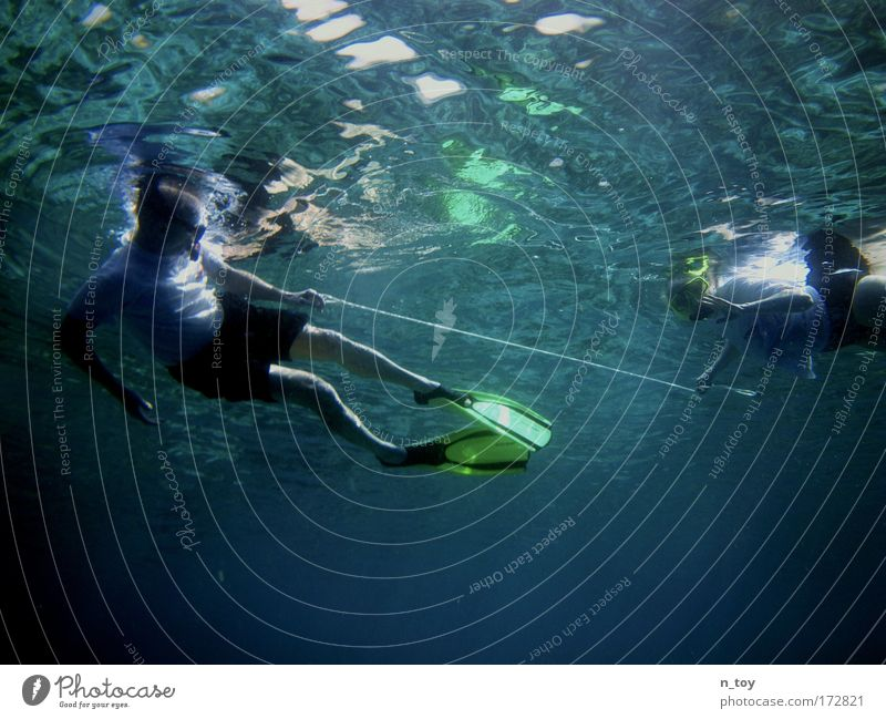 entangled Colour photo Underwater photo Morning Sunlight Upward Calm Snorkeling Vacation & Travel Tourism Freedom Ocean Island Human being 2 Water Reef