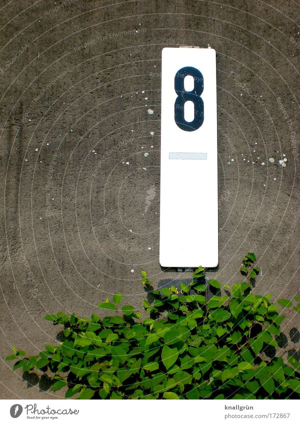White Green Plant Black Wall (building) Gray Wall (barrier) Signs and labeling Safety Bushes Digits and numbers Signage 8 Rectangle Foliage plant
