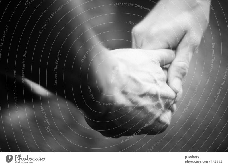 Human being Woman Man Hand Adults Love Emotions Happy Couple Together Safety Romance To hold on Touch Trust Passion