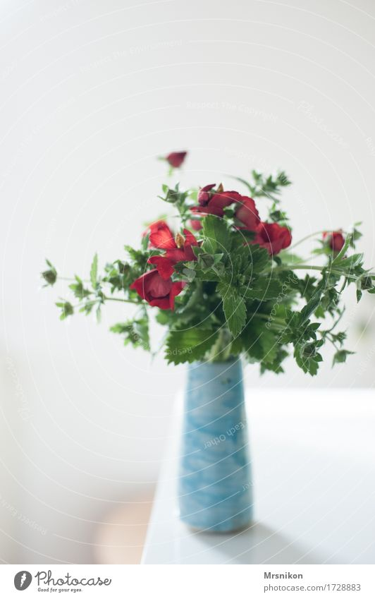 captured Flower Foliage plant Esthetic Design Vase Bouquet Mother's Day Birthday Strawberry blossom Pottery Light blue Red Green Soft Decoration Colour photo