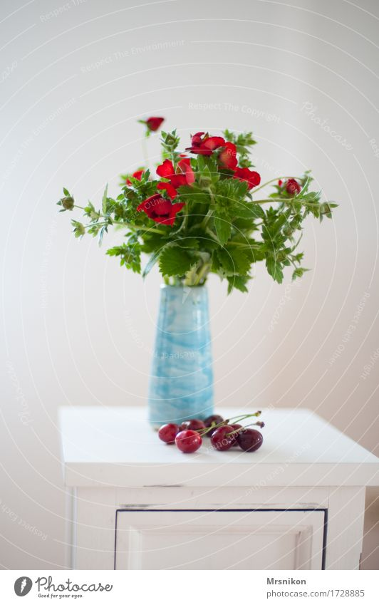 strawberry blossoms Summer Esthetic Design Vase Cherry Blossom Green Red Decoration White Summery Pick Bouquet Pottery Light blue Fresh Birthday Mother's Day