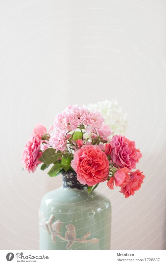 roses Plant Flower Leaf Blossom Illuminate Vase Bouquet Mother's Day Birthday Donate Pink Pottery Beautiful Lovely Summery Picked Colour photo Subdued colour