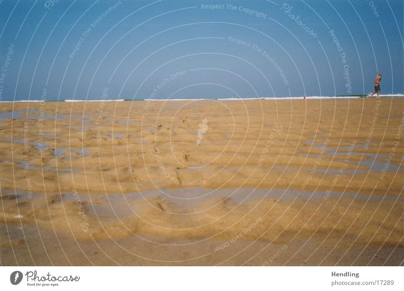 Yo runs away at low tide France Europe ebb Wave structure in sand much sand Atlantic coast