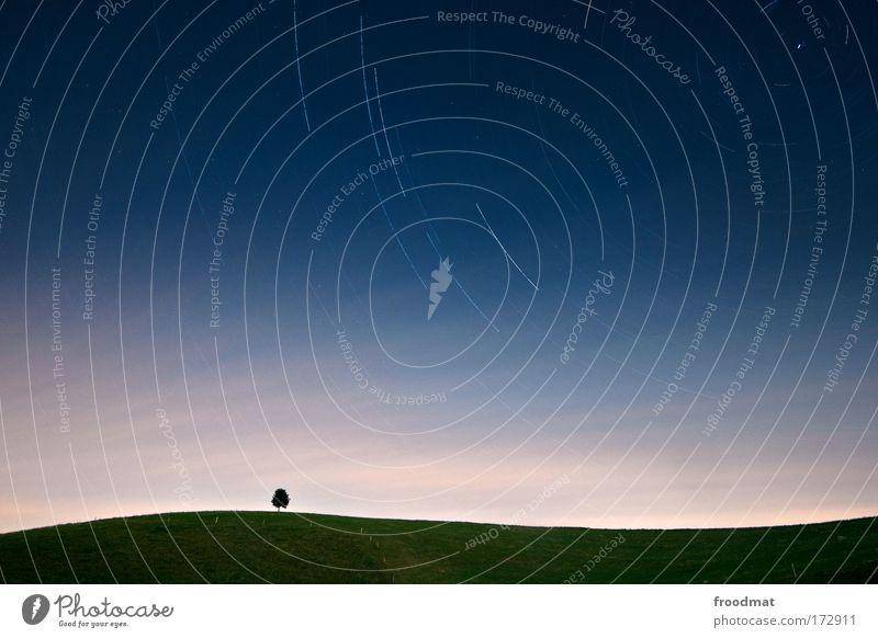 Nature Sky Tree Blue Summer Loneliness Dark Meadow Movement Dream Landscape Stars Small Environment Horizon Esthetic