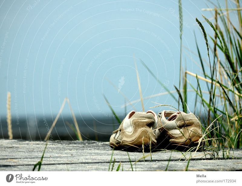 Blue Vacation & Travel Summer Ocean Beach Calm Relaxation Wood Grass Coast Lake Horizon Contentment Footwear Wait Stand
