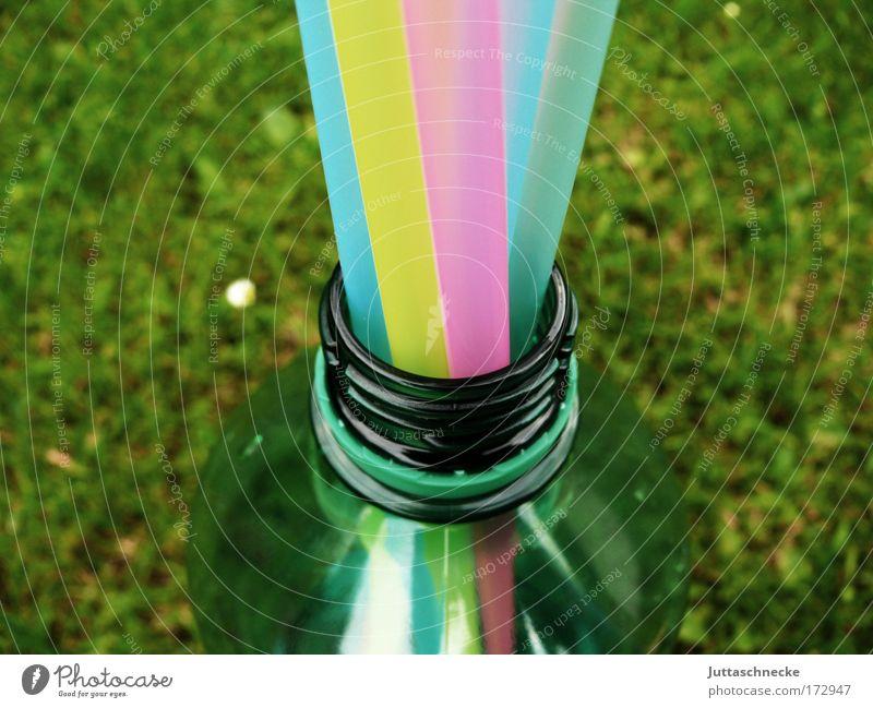 Beverage Bottle Refreshment Majorca Thirst Neck of a bottle Straw Minerals Mineral water Thirsty Ballermann
