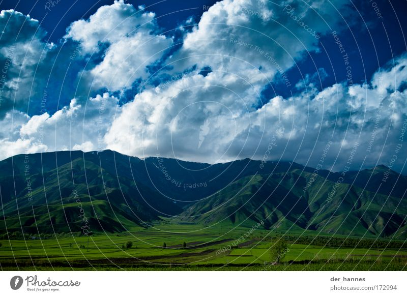 Nature Sky Green Blue Summer Clouds Life Meadow Grass Mountain Spring Landscape Field Wind Weather Environment