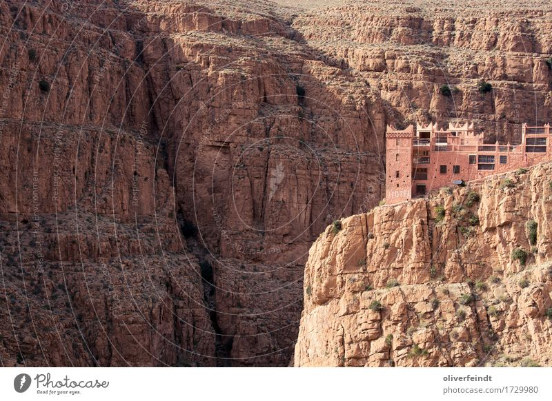 Morocco - Gorges du Dades Vacation & Travel Trip Adventure Far-off places Freedom Expedition Environment Nature Landscape Elements Earth Sand Beautiful weather