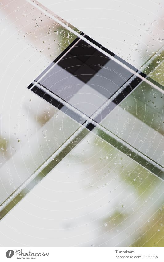 Green Water White Window Black Line Rain Glass Drops of water Double exposure Boredom Attempt Vacation home