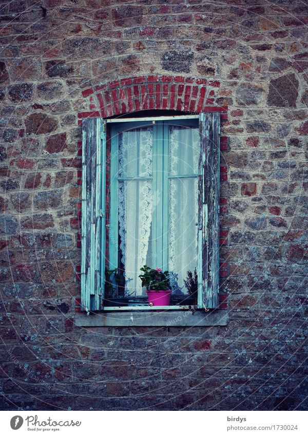 time windows Living or residing Pot plant Old town House (Residential Structure) Quarrystone facade Facade Window Shutter Flowerpot Esthetic Authentic Original