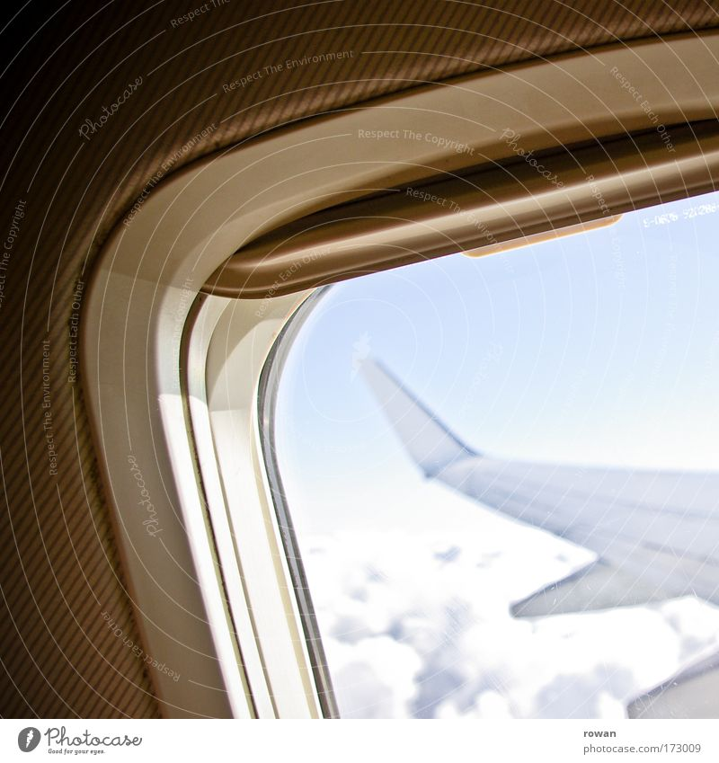 Sky Vacation & Travel Clouds Window Freedom Airplane Flying Aviation Vantage point Wing Passenger plane Vacation mood In the plane View from the airplane