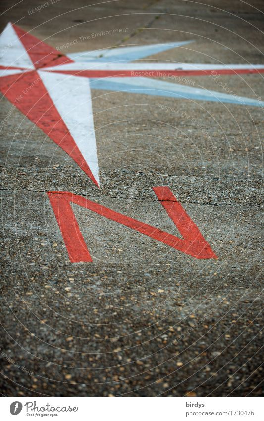 Guidance for north travellers Vacation & Travel Weather Sign Characters Wind rose Esthetic Positive Gray Red White Precision Far-off places Earth Target North