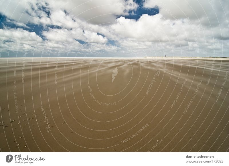 always this wind! Colour photo Deserted Copy Space bottom Copy Space middle Sunlight Wide angle Nature Landscape Sand Sky Clouds Wind Gale Coast Beach North Sea