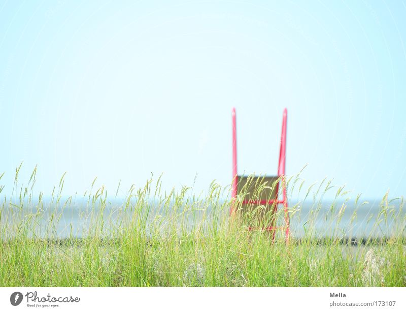 Ocean Green Blue Plant Red Summer Joy Beach Vacation & Travel Relaxation Playing Grass Dream Sadness Coast Environment