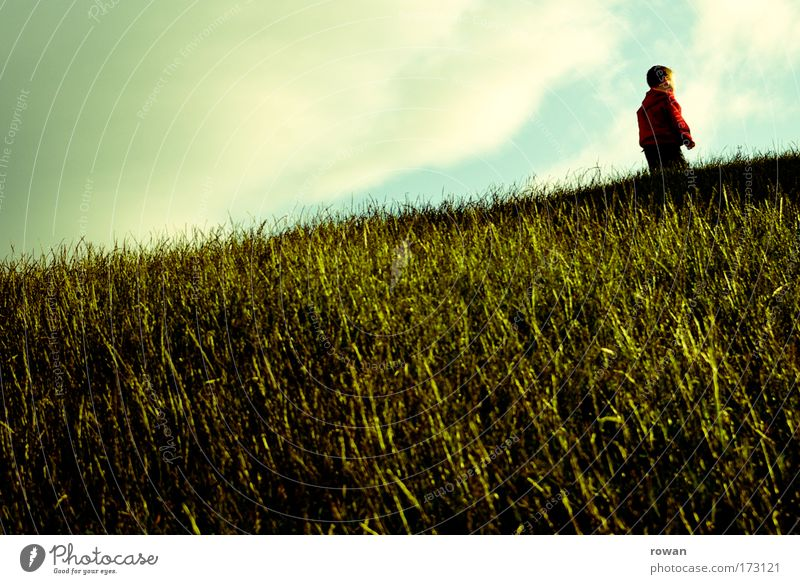 uphill Colour photo Exterior shot Day Human being Masculine Child Toddler Boy (child) Clouds Grass Park Meadow Going Red Green Playing