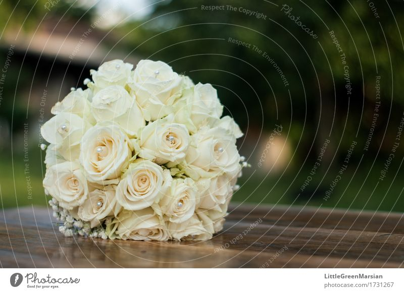 The Brides Bouquet 3 A Royalty Free Stock Photo From Photocase