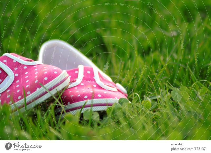 my lovely pink shoes Colour photo Exterior shot Style Leisure and hobbies Summer Feet Nature Grass Garden Fashion Footwear Lie Hip & trendy Green Pink Emotions