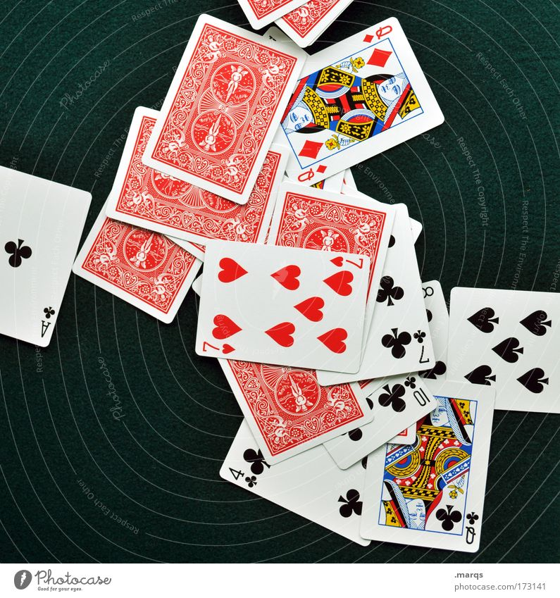 The game is over. Colour photo Multicoloured Bird's-eye view Lifestyle Joy Happy Playing Game of cards Poker Game of chance Success Attentive Fair Avaricious
