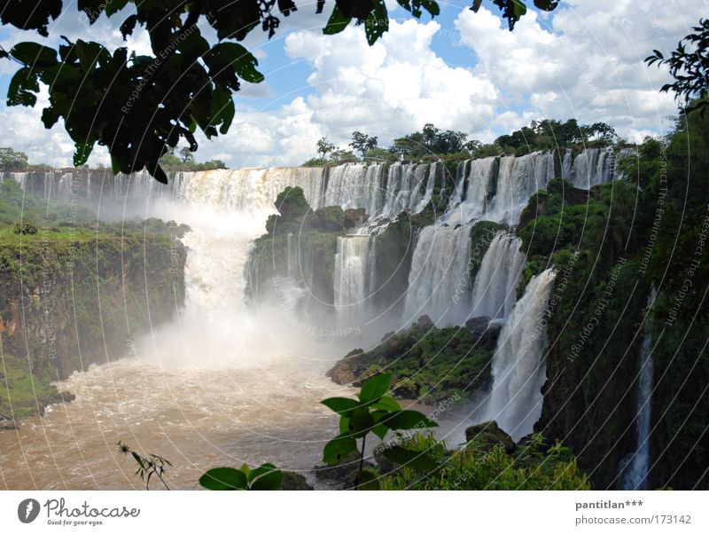 Cascadas Vacation & Travel Tourism Brazil Iguazu Falls paraguay jungles South America Nature Landscape Plant Elements Water Sky Clouds Virgin forest River
