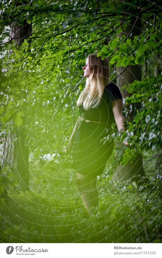 Jacki in the woods. Human being Feminine Young woman Youth (Young adults) 1 18 - 30 years Adults Environment Nature Summer Tree Forest Dress Blonde Long-haired