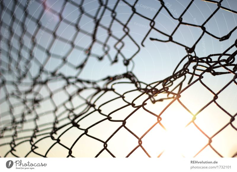 wire mesh fence with hole Sky Cloudless sky Sun Fence Gap in the fence Hollow Structures and shapes Broken Border Open Colour photo Subdued colour
