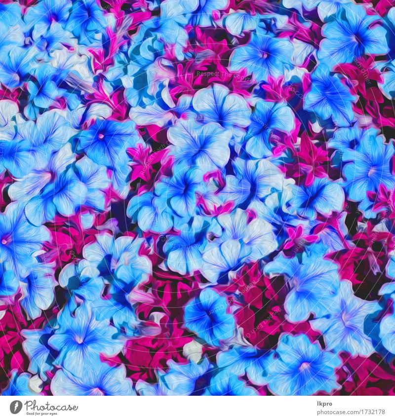 Blue spring flowers on a pink surface a royalty free stock photo n flowers and garden painted nature plant blue summer beautiful green white flower red leaf blossom mightylinksfo Choice Image