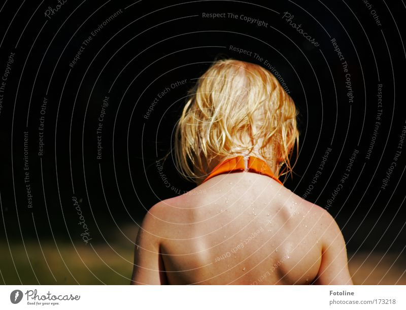 In thought Colour photo Copy Space left Day Upper body Rear view Human being Feminine Skin Head Hair and hairstyles Back Arm 1 Nature Water Drops of water Sun