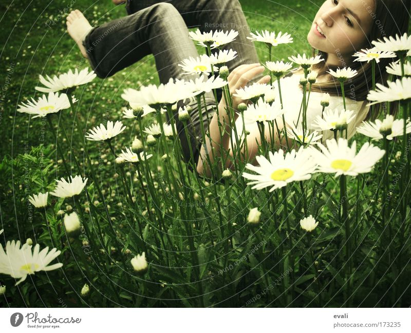 Human being Youth (Young adults) Green Flower Summer Face Yellow Feminine Meadow Grass Woman Garden Happy Spring Contentment Joy