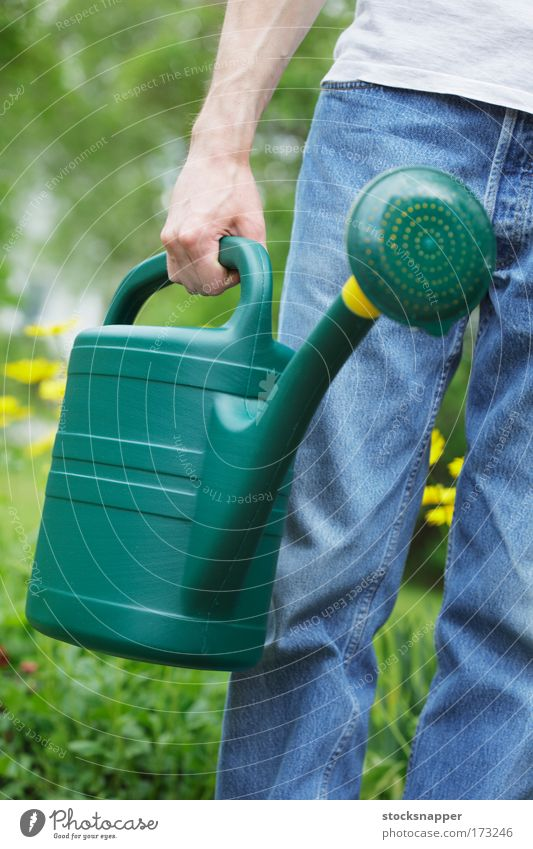 Watering can outdoor Summer Day spout Garden chore Equipment Gardening Carrying holding holds Hand Tin Plastic Green Grasp Exterior shot Object photography